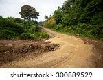 Waterlogged Dirt Road Leading...