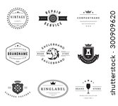 retro logotypes vector set.... | Shutterstock .eps vector #300909620