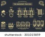 vector beer infographics with... | Shutterstock .eps vector #301015859