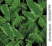 tropical leaves  night jungle.... | Shutterstock .eps vector #301063799