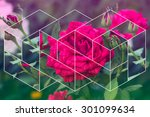 Abstract Flowers Geometric...