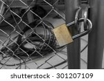 Wire Fence Door With Lock