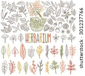 herbarium. different types and... | Shutterstock .eps vector #301237766