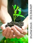 man holding young plant in... | Shutterstock . vector #301366469