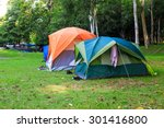 Dome Tents Of Tourist In Fores...
