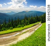 composite landscape with empty road to coniferous forest through the grassy hillside meadow on high mountain range in morning light - stock photo