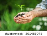 earth  day  plant. | Shutterstock . vector #301489076