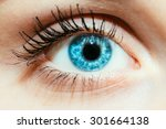 Bright Blue Eye Close Up Femal...