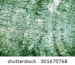 natural dried crack's wood... | Shutterstock . vector #301670768