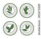 set of green essential oil...   Shutterstock .eps vector #301671020