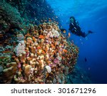 woman diver on the wall at fury ... | Shutterstock . vector #301671296