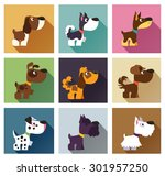 popular breeds of dog in simple ... | Shutterstock .eps vector #301957250