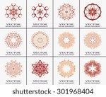 set of ornaments patterns.... | Shutterstock .eps vector #301968404