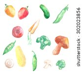 set of watercolor vegetables... | Shutterstock . vector #302023856