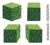 perspective square bushes.... | Shutterstock .eps vector #302024294