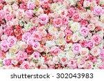 Stock photo pink rose background 302043983