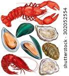set of seafood. lobster ... | Shutterstock .eps vector #302052554