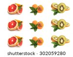 grapefruit  apricot  slices of... | Shutterstock . vector #302059280