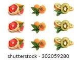 grapefruit  apricot  slices of... | Shutterstock . vector #302059280
