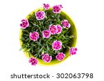 top view of purple mini... | Shutterstock . vector #302063798