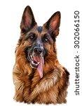 Drawing German Shepherd Dog ...