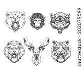 Animals Heads. Line Art