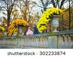 young romantic couple in paris  ...   Shutterstock . vector #302233874