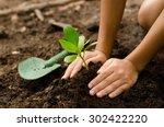 Soil Planting Seeding Seedling...