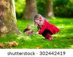 girl feeding squirrel in autumn ... | Shutterstock . vector #302442419