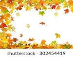 Falling Autumn Maple Leaves...