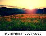 sunrise landscape.early morning ... | Shutterstock . vector #302473910