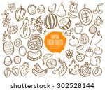 set of hand drawn tropical... | Shutterstock .eps vector #302528144