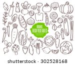 set of hand drawn vegetables... | Shutterstock .eps vector #302528168