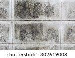 old wall texture | Shutterstock . vector #302619008