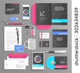 vector graphic professional... | Shutterstock .eps vector #302634839