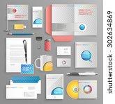 vector graphic professional... | Shutterstock .eps vector #302634869