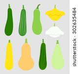 summer squash vegetables... | Shutterstock .eps vector #302635484