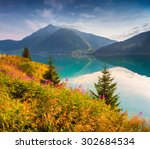 colorful summer morning in the... | Shutterstock . vector #302684534
