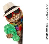 funny cat with passport and... | Shutterstock . vector #302690570