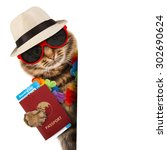 funny cat with passport and...