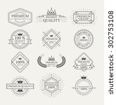 premium quality guarantee... | Shutterstock .eps vector #302753108