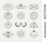 premium quality guarantee... | Shutterstock .eps vector #302753108