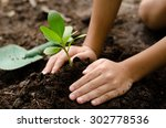 close up kid hand planting... | Shutterstock . vector #302778536