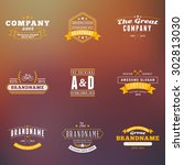 set of hipster vintage labels ... | Shutterstock .eps vector #302813030