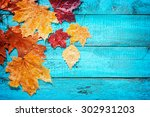 autumn leaves on a beautiful... | Shutterstock . vector #302931203