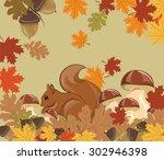 Squirrel In Forest. Autumn...