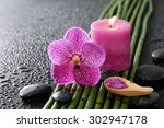 Pink Orchid And Bamboo Grove ...