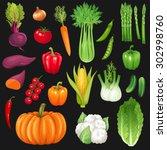 Set Of Fresh Vegetables. Vecto...