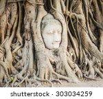Buddha Head Overgrown By Fig...