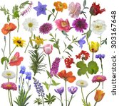 digital painting of flowers for ... | Shutterstock . vector #303167648